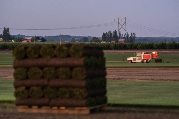China is buying up American farms. Washington wants to crack down.